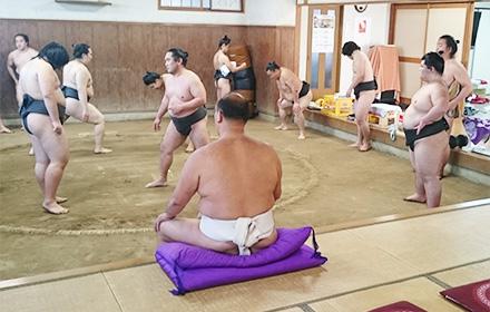 sumo02